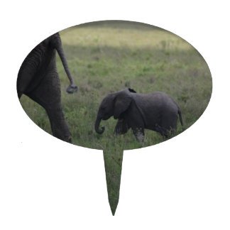Baby Elephant Cake Picks