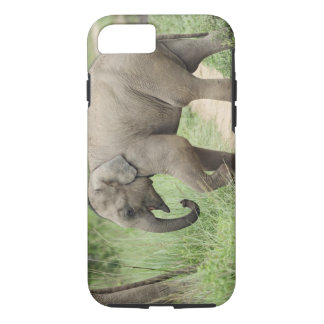 Baby Elephant following the mother,Corbett iPhone 8/7 Case
