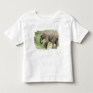 Baby Elephant following the mother,Corbett T-shirt