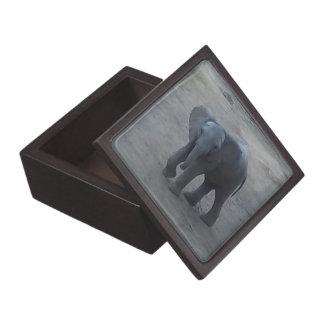Baby Elephant Gift Box - by Fern Savannah