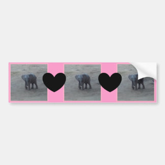 Baby Elephant & Hearts Bumper Sticker -C