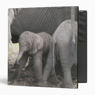 Baby elephant is standing and wobbly 3 ring binder