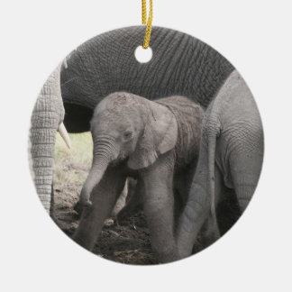 Baby elephant is standing and wobbly ceramic ornament