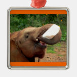 Baby Elephant ! Ornaments