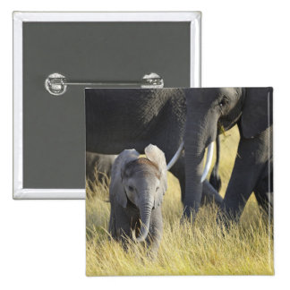 Baby Elephant Pinback Button