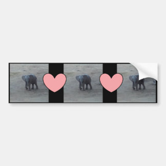 Baby Elephant & Pink Hearts Bumper Sticker