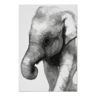 Baby Elephant - Poster
