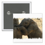 Baby Elephant Square Pin