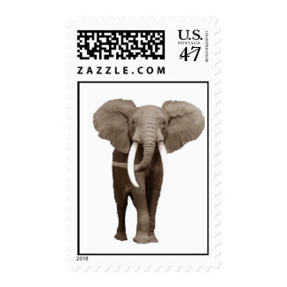Baby Elephant Stamps
