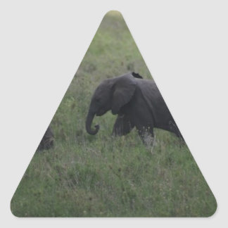 Baby Elephant Triangle Sticker