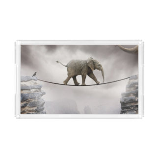 Baby elephant walks tightrope across big gorge. serving tray