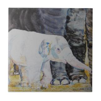 Baby Elephant with Mama Ceramic Tile