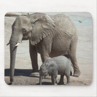 Baby Elephant with Mommy Mouse Pad