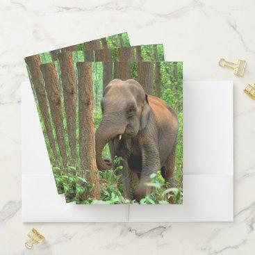 Beach Themed Baby Elephants Pocket Folder