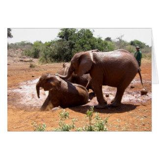 BABY ELEPHANTS WASHING IN KENYA CARD