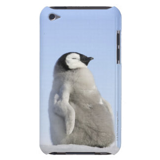 Baby Emperor Penguin, Snow Hill Island Barely There iPod Case