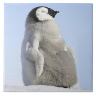 Baby Emperor Penguin, Snow Hill Island Ceramic Tile