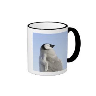 Baby Emperor Penguin, Snow Hill Island Coffee Mug