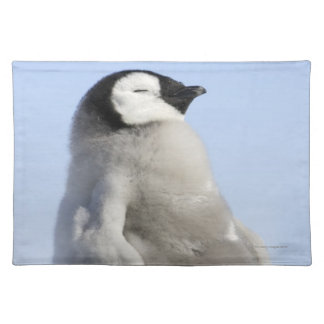 Baby Emperor Penguin, Snow Hill Island Placemats