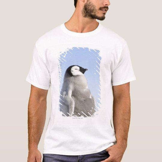 Baby Emperor Penguin, Snow Hill Island T-Shirt