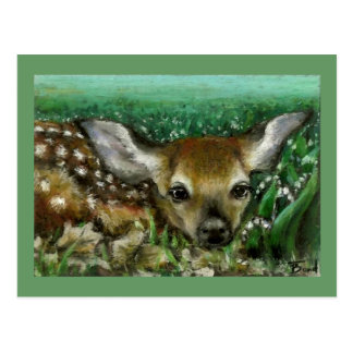 Baby fawn and lilies of the valley postcard