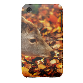 Baby fawn sniffing the autumn leaves on the ground Case-Mate iPhone 3 case