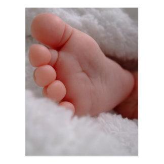 Baby Feet Postcard