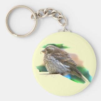 Baby Finch Key Chain