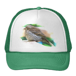 Baby Finch Trucker Hat