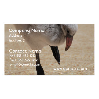 Baby Flamingo Business Cards