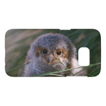 Baby Flammulated Owl Photograph Samsung Galaxy S7 Case