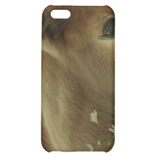 Baby Foal iPhone Case Cover For iPhone 5C