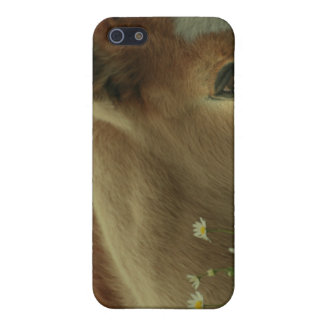 Baby Foal iPhone Case Covers For iPhone 5
