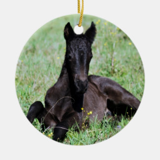 Baby foal lying in the meadow christmas tree ceramic ornament