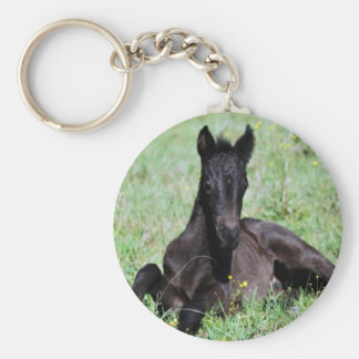Baby foal lying in the meadow keychain