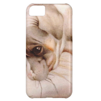 Baby Fox Terrier - SUPER CUTE ! Case For iPhone 5C