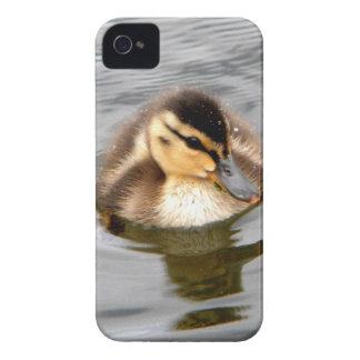 Baby Fuzz Case-Mate iPhone 4 Case