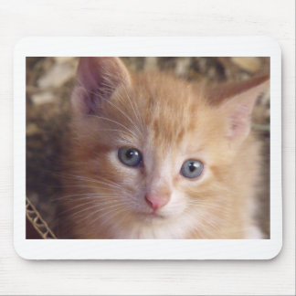 Baby Garfield Mouse Pad