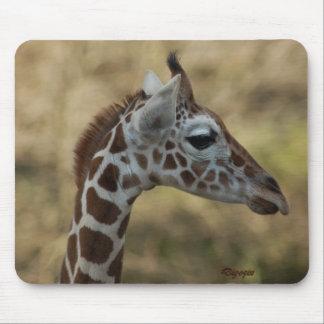 Baby Giraffe 01 Mouse Pad