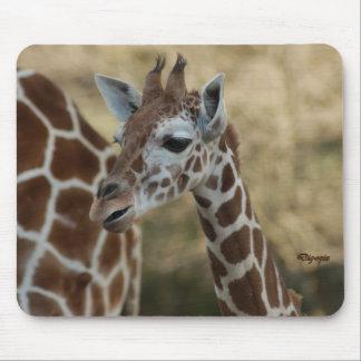 Baby Giraffe 02 Mouse Pad