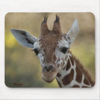 Baby Giraffe 08 Mouse Pad