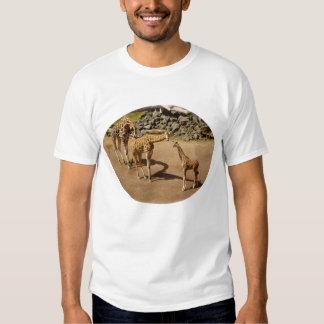 Baby Giraffe and Giraffe Family T Shirts