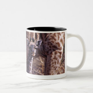 Baby giraffe and mother, Tanzania Two-Tone Coffee Mug