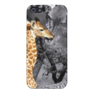Baby Giraffe iPhone SE/5/5s Case