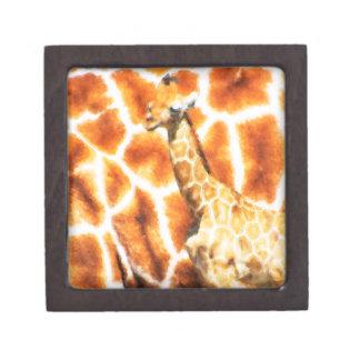 Baby Giraffe Jewelry Box