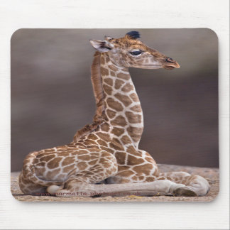 Baby Giraffe Mousemat Mouse Pad