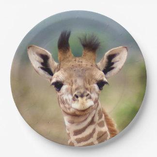"Baby giraffe picture, Kenya, Africa | 9"" Paper Plate"