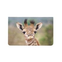 Baby giraffe picture, Kenya, Africa   Journal