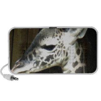 Baby Giraffe Speakers