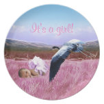 Baby Girl announcement Plates